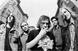 Gin Blossoms online