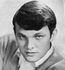 Tommy Roe online